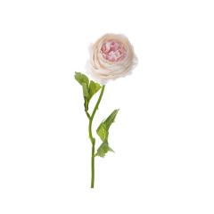 Ροζ κλαδί παιώνια 37εκ