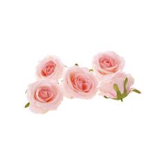 Ροζ τριαντάφυλλο κεφαλί