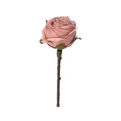 Ροζ κλαδί τριαντάφυλλο 30εκ