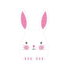 Τσάντα Δώρου Easter Bunny 20tem