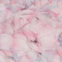 Ροδοπέταλα συνθετικά λευκό ροζ