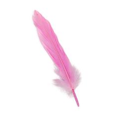 Πούπουλο φτερό ροζ 13εκ 18τεμ