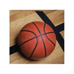 Χαρτοπετσέτα φαγητού σε θέμα μπάσκετ